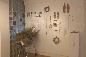 Caroline Dear Flora residency - exhibition display