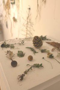 Caroline Dear Flora residency - exhibition display detail