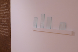 Caroline Dear - Glass prints shelf - Timespan