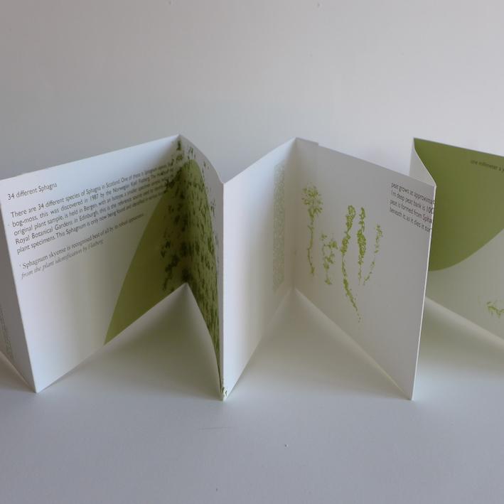 Caroline Dear - Sphagnum-concertina-artist-book